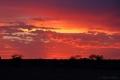 Einer von vielen schönen Sonnenuntergängen im Outback