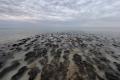 Stromatolithen