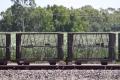 Zuckerrohranbau mit eigenem Schienennetz