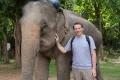 Beindruckende Tiere. Überaschend war für mich auch, wie leise die Elefanten sind.