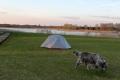 Polen8 - Masurische Seenplatte mit Wachhund
